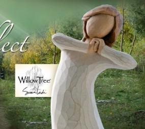 willow_285x2555a9424486fd89